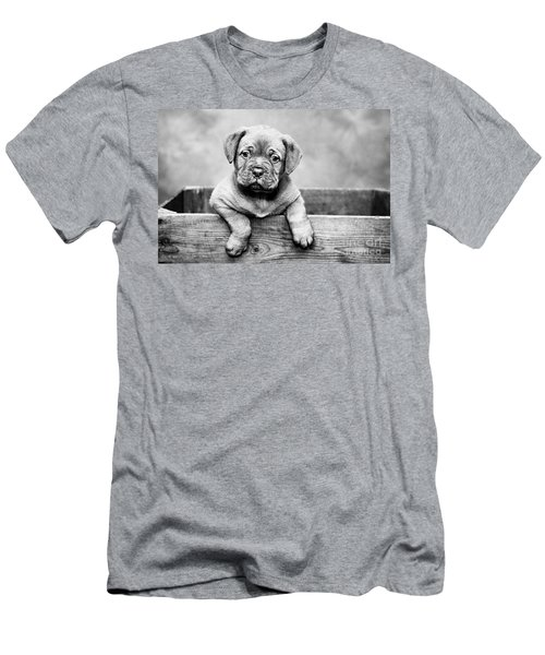 Puppy - Monochrome 3 Men's T-Shirt (Athletic Fit)