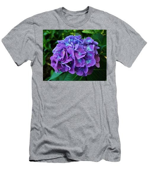 Purple Hydrangea Men's T-Shirt (Athletic Fit)