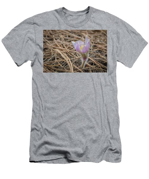 Purple In The Pine Men's T-Shirt (Athletic Fit)