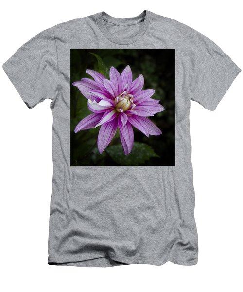 Purple Pink Dahlia Men's T-Shirt (Athletic Fit)
