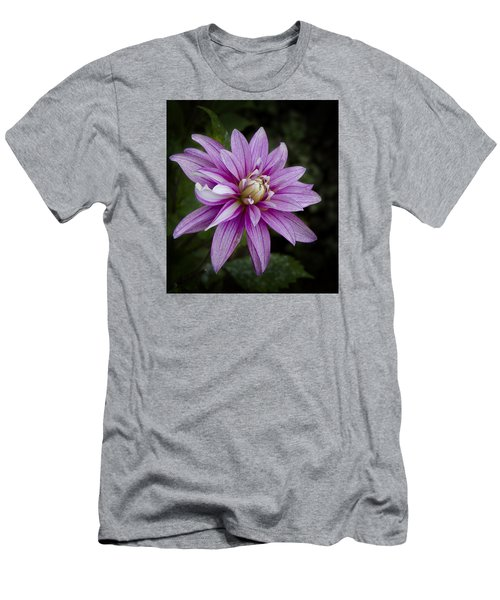 Men's T-Shirt (Athletic Fit) featuring the photograph Purple Pink Dahlia by Ken Barrett