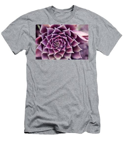 Purple Succulent Plant Blossom In Summer Men's T-Shirt (Slim Fit) by Jingjits Photography