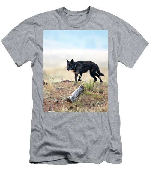 Queen Of Lamar Valley Men's T-Shirt (Athletic Fit)