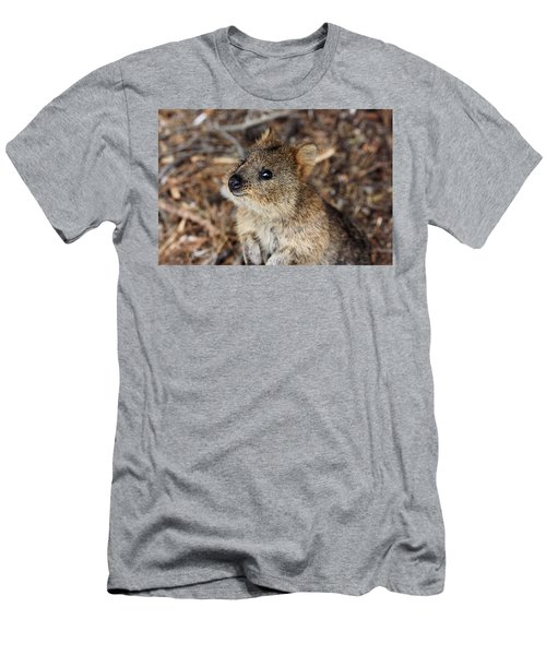 Quokka Men's T-Shirt (Athletic Fit)
