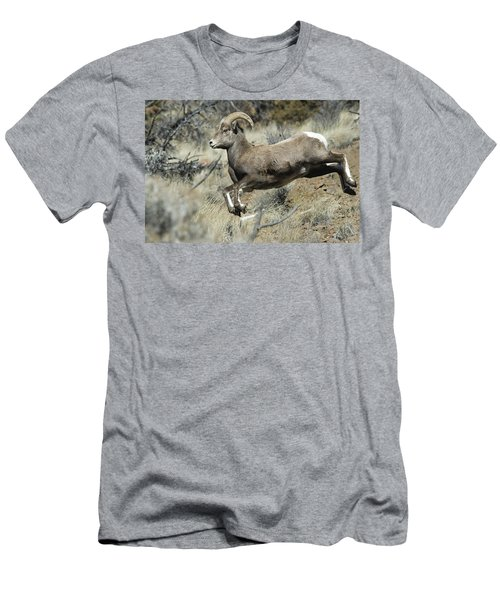 Ram In A Hurry Men's T-Shirt (Athletic Fit)