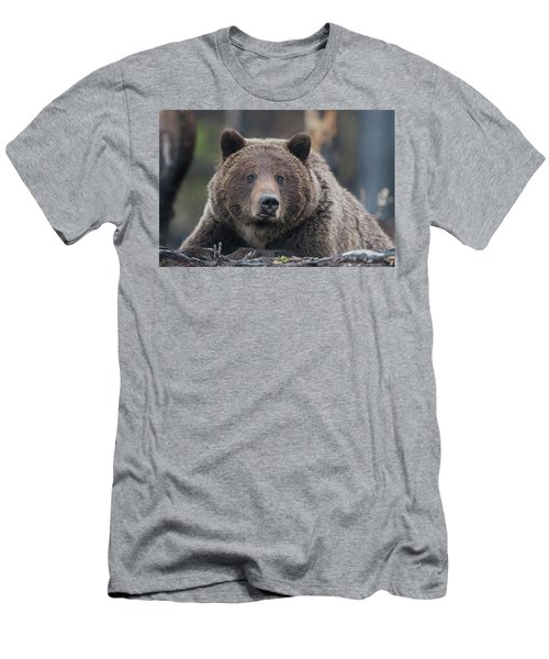 Raw, Rugged And Wild- Grizzly Men's T-Shirt (Athletic Fit)