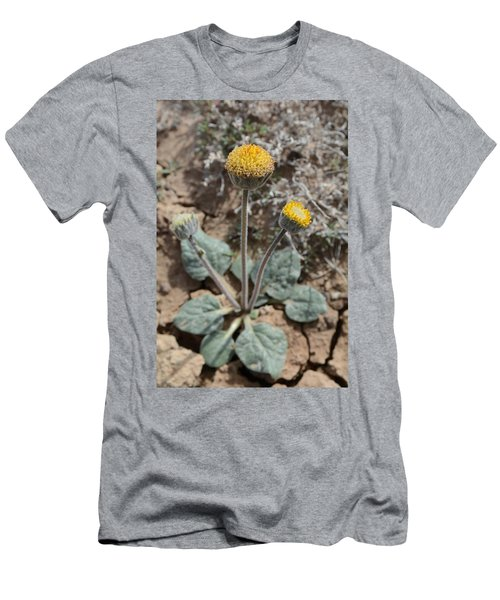 Rayless Daisy Men's T-Shirt (Slim Fit) by Jenessa Rahn