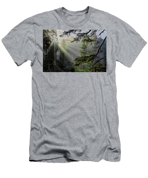 Morning Rays Through An Oregon Rain Forest Men's T-Shirt (Athletic Fit)