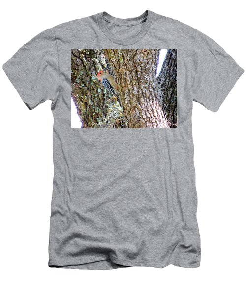 Red-bellied Woodpecker By Bill Holkham Men's T-Shirt (Slim Fit) by Bill Holkham
