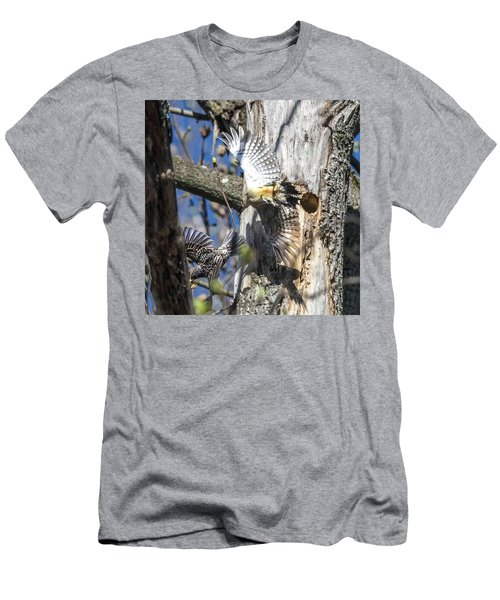 Red Bellied Woodpecker Chasing An Attacking Starling Men's T-Shirt (Athletic Fit)