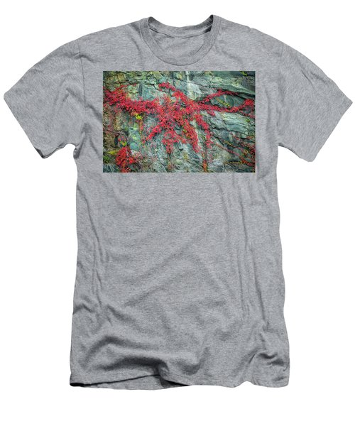 Red Creeper Men's T-Shirt (Slim Fit) by David Cote