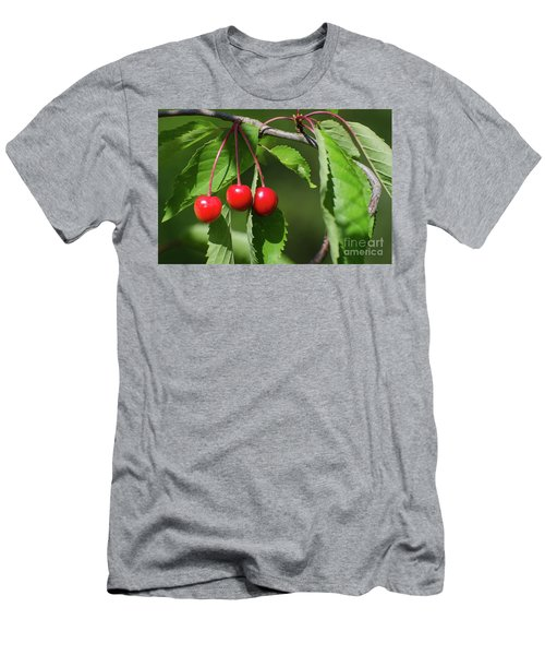 Men's T-Shirt (Athletic Fit) featuring the photograph Red Delicious by Kennerth and Birgitta Kullman