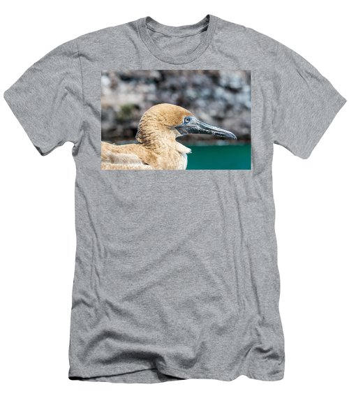 Red Footed Booby Juvenile Men's T-Shirt (Slim Fit) by Jess Kraft