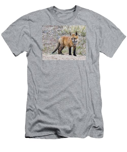 Red Fox Kit Men's T-Shirt (Athletic Fit)