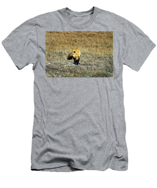 Men's T-Shirt (Slim Fit) featuring the photograph Red Fox On The Tundra by Anthony Jones