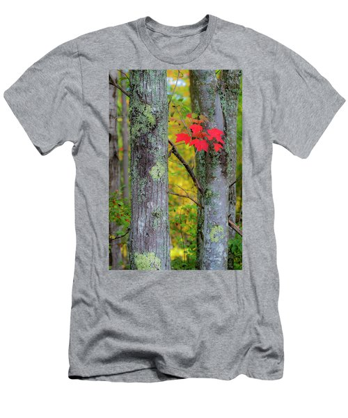 Men's T-Shirt (Athletic Fit) featuring the photograph Red Leaves by Gary Lengyel