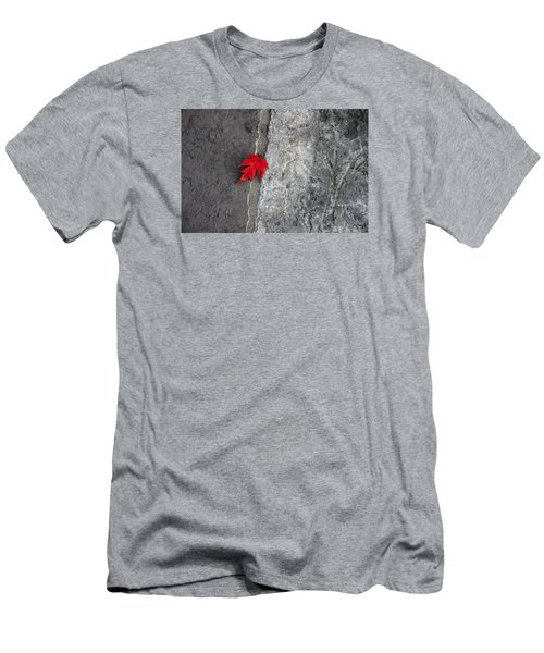 Red On Gray Men's T-Shirt (Slim Fit) by Allen Carroll