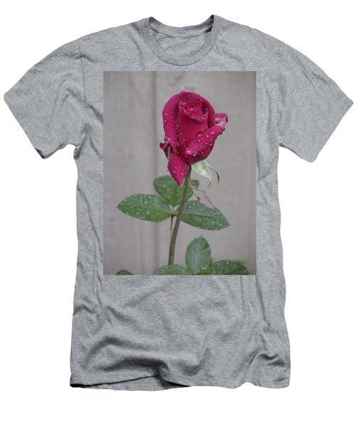 Red Rose In Rain Men's T-Shirt (Athletic Fit)