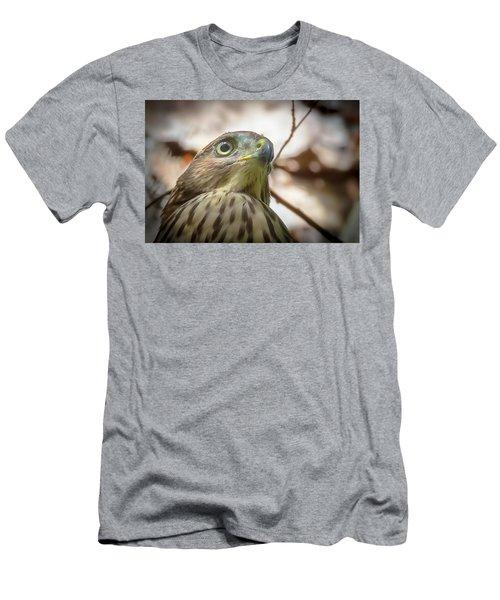 Red-shouldered Hawk Fledgling 3 Men's T-Shirt (Athletic Fit)