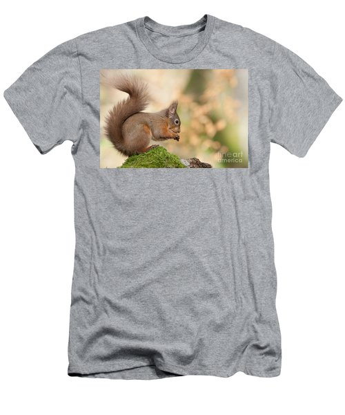 A Moment Of Meditation - Red Squirrel #27 Men's T-Shirt (Athletic Fit)