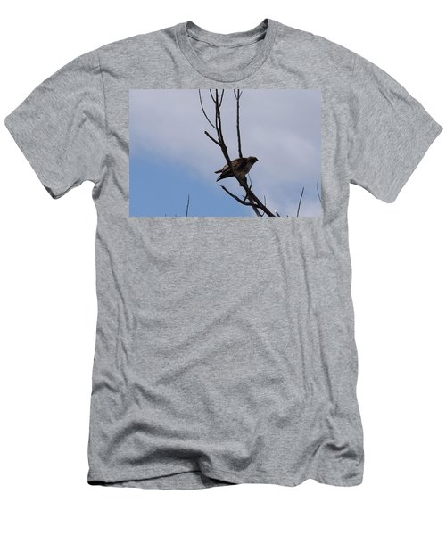 Men's T-Shirt (Athletic Fit) featuring the photograph Red Tail Hawk Male Tower Rd Denver by Margarethe Binkley