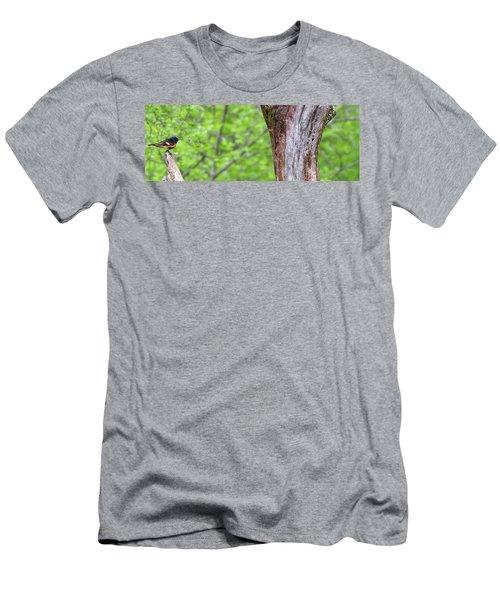 Redstart Men's T-Shirt (Athletic Fit)