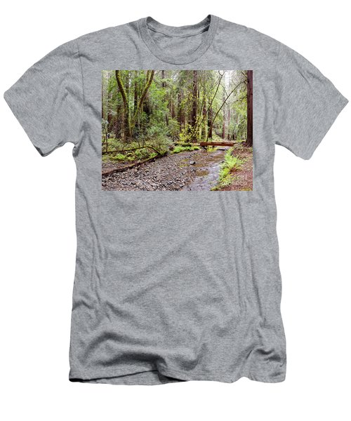 Redwood Creek Flowing Through Muir Woods National Monument - Mill Valley Marin County California Men's T-Shirt (Athletic Fit)