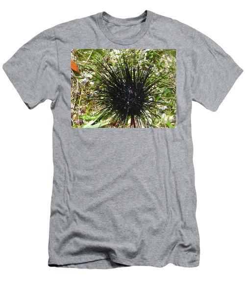 Reef Life - Sea Urchin 1 Men's T-Shirt (Slim Fit) by Exploramum Exploramum
