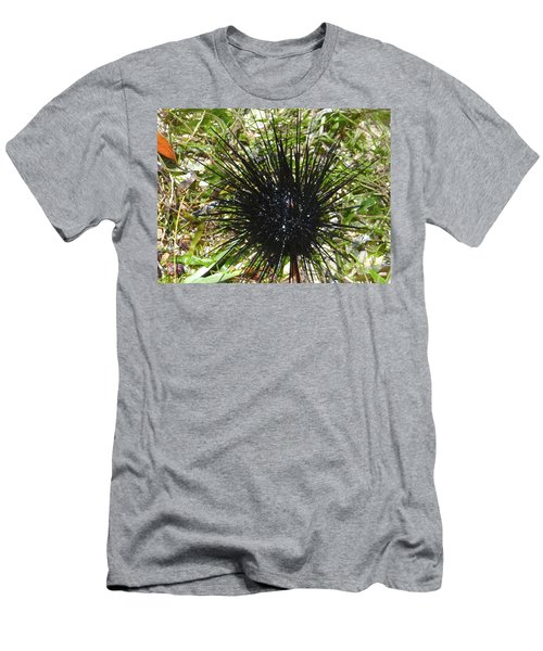 Reef Life - Sea Urchin 1 Men's T-Shirt (Athletic Fit)