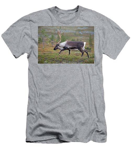 Reindeer Men's T-Shirt (Athletic Fit)