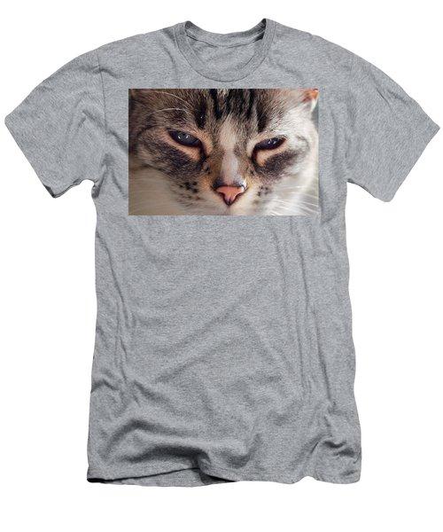 Remi Cat Men's T-Shirt (Athletic Fit)