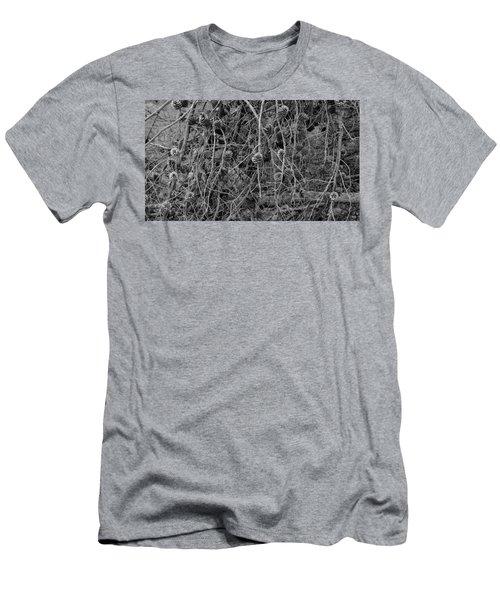Reminder Of Winter  Men's T-Shirt (Athletic Fit)
