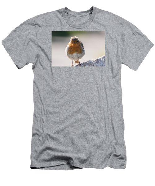 Robin Front Men's T-Shirt (Athletic Fit)