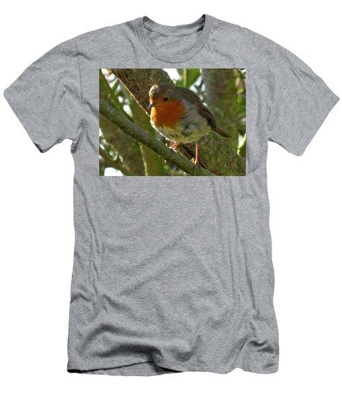 Robin In A Tree Men's T-Shirt (Slim Fit) by John Topman