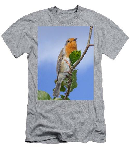 Robin In Eden Men's T-Shirt (Athletic Fit)