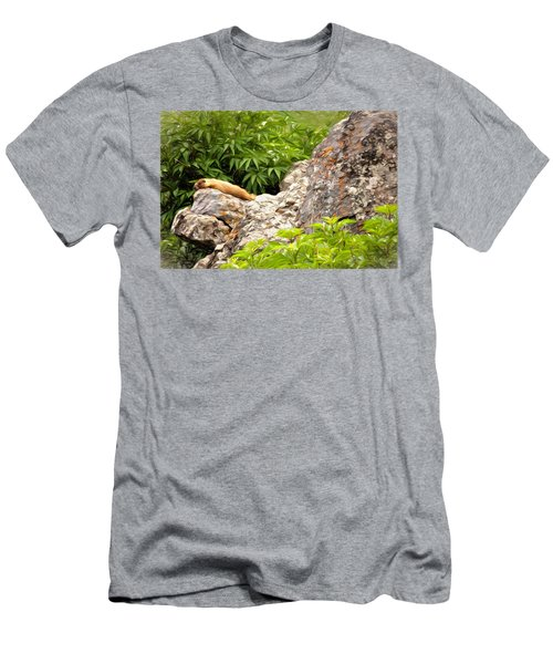 Rock Chuck Men's T-Shirt (Slim Fit) by Lana Trussell