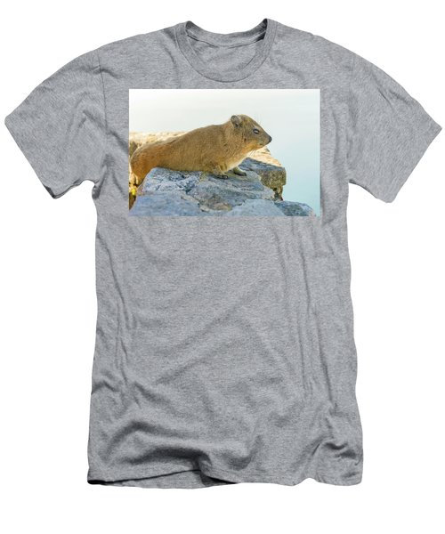 Rock Hyrax On Table Mountain Cape Town South Africa Men's T-Shirt (Slim Fit) by Marek Poplawski