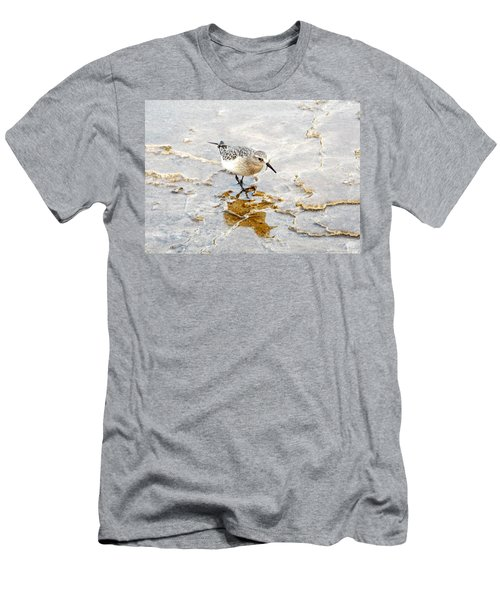 Rock Wren In Mammoth Springs Yellowstone Men's T-Shirt (Athletic Fit)