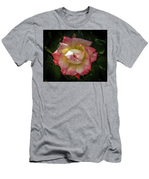 Rose From Mable Ringling's Garden Men's T-Shirt (Athletic Fit)