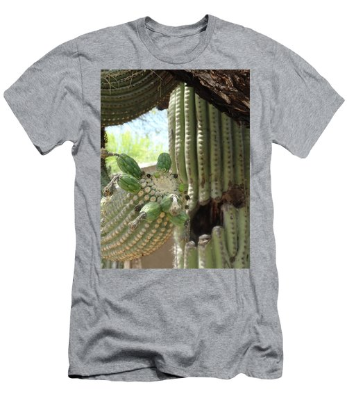 This Cactus Is Rotten To The Core Men's T-Shirt (Athletic Fit)