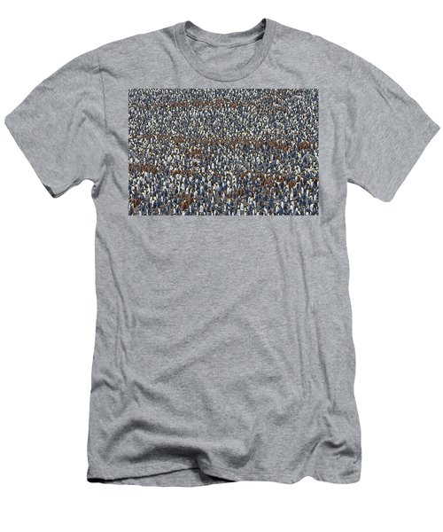 Men's T-Shirt (Slim Fit) featuring the photograph Royal Layers by Tony Beck