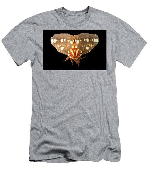 Royal Walnut Moth On Black Men's T-Shirt (Athletic Fit)
