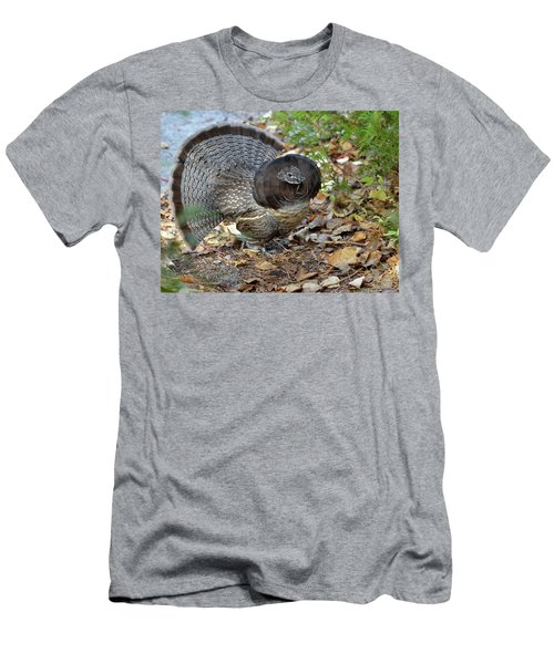 Ruffed Up- Ruffed Grouse Displaying Men's T-Shirt (Athletic Fit)