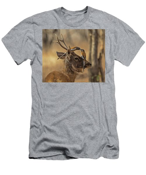 Rufous Treepies Men's T-Shirt (Athletic Fit)
