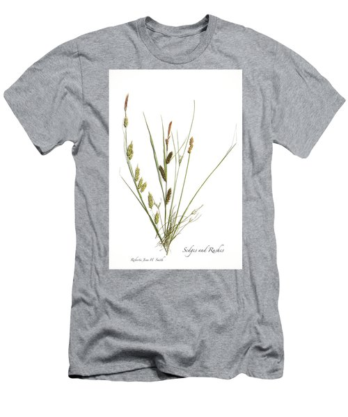 Rushes And Sedges Men's T-Shirt (Athletic Fit)