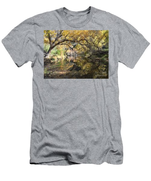 Sabino Canyon In Fall Men's T-Shirt (Athletic Fit)