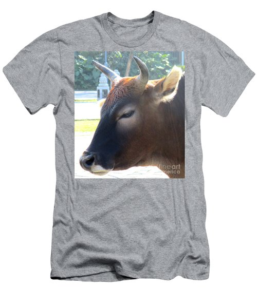 Men's T-Shirt (Slim Fit) featuring the photograph Sacred Cow 4 by Randall Weidner