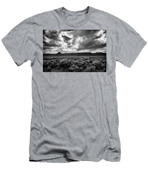 Sage And Clouds Men's T-Shirt (Athletic Fit)