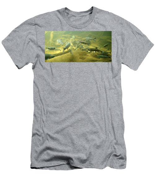 Men's T-Shirt (Slim Fit) featuring the photograph Salmon And Sturgeon by Katie Wing Vigil