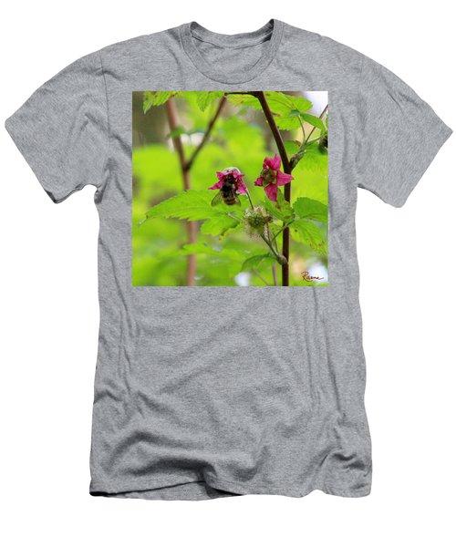 Salmonberry Honey Men's T-Shirt (Athletic Fit)